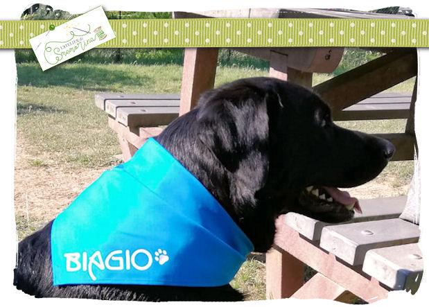 Biagio2